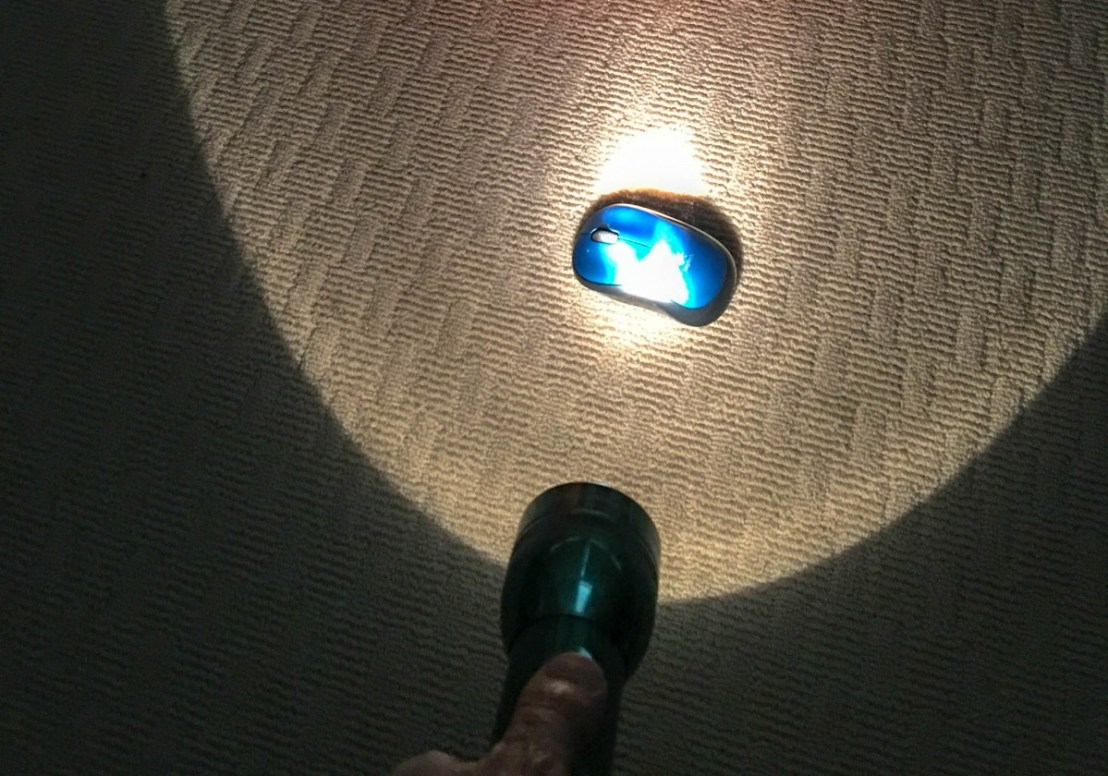 Flashlight Lighting Mouse-Poo In Poor Lighting Conditions