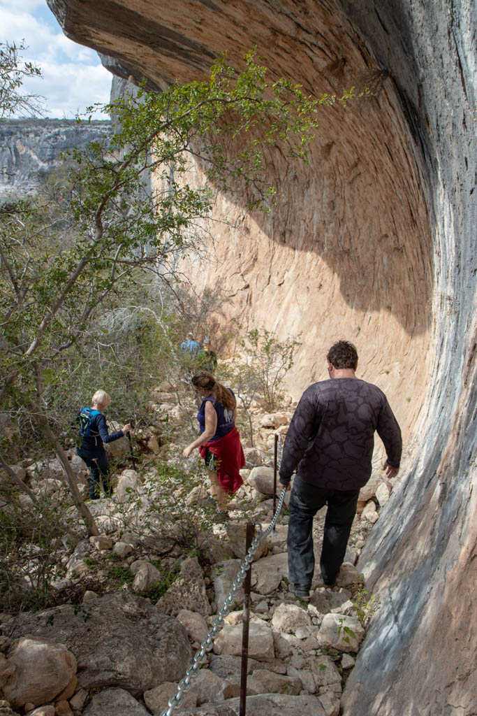 Narrow Claustrophobic Trail Section