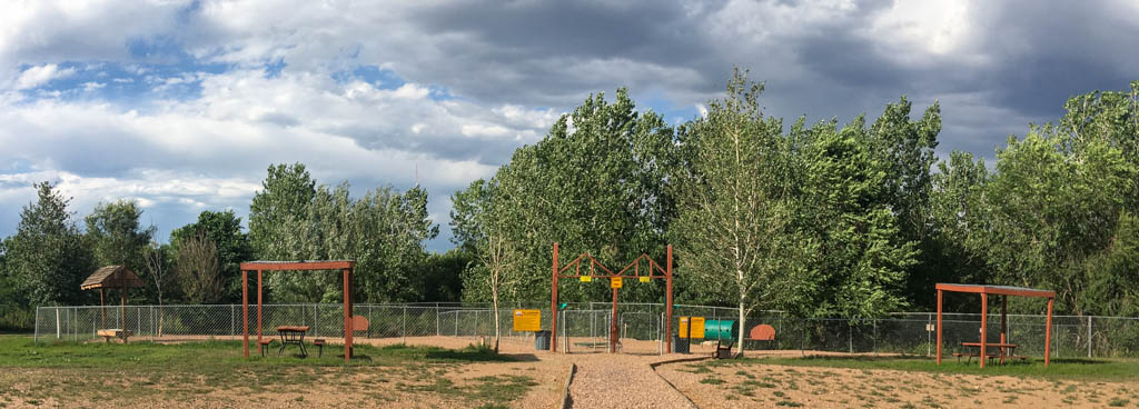 Dog Park Without Shade