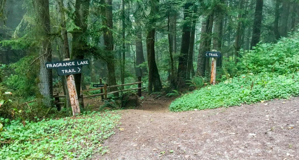 Fragrance Lake Trail