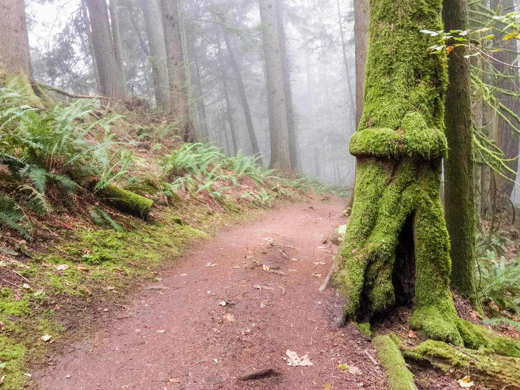 Middle Earth Hobbit Road