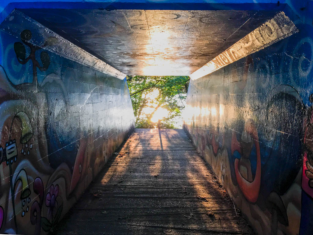 Tunnel Batched In Sunset's Glow