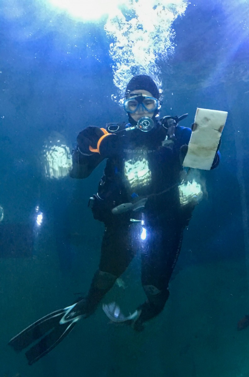 Diver Cleaning the Tube