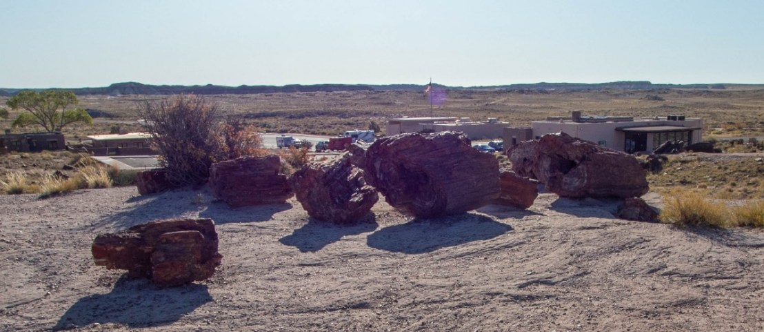 Petrified Forest National Park Giant Logs Trail