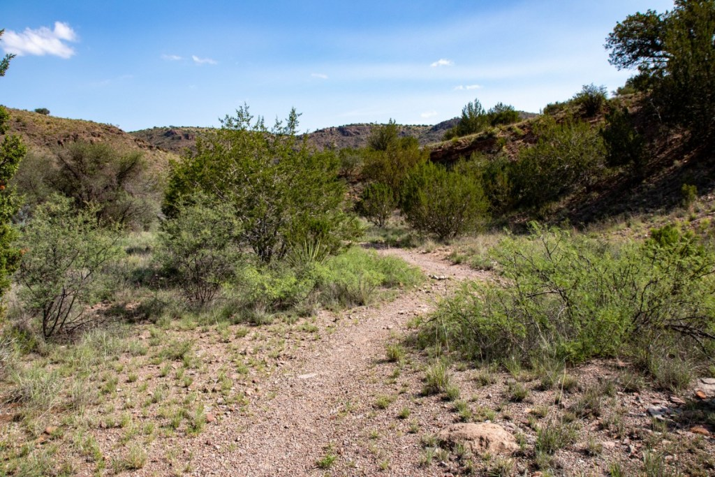 Trail Following Dry Creek Bed