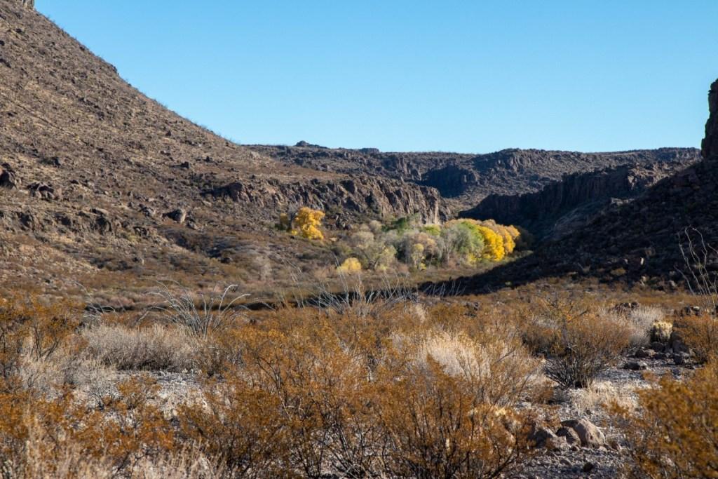 Rugged Desert Landscape