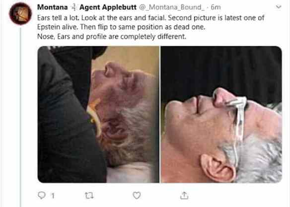 epstein is dead comparison