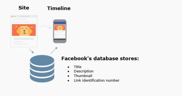 facebook-database