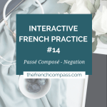 Interactive French Practice 14