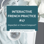 Interactive French Practice 17