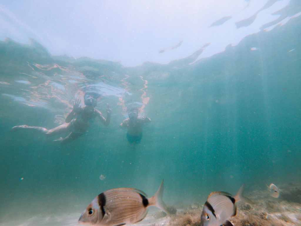 Sardaigne Snorkelling