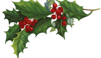 kisspng-ilex-crenata-common-holly-christmas-aquifoliales-c-mistletoe-5ac444911c0cd5.5538831715228120491149
