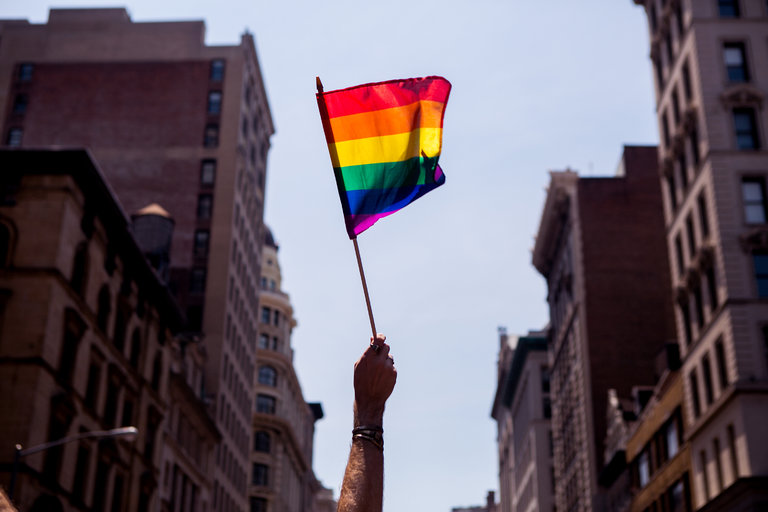 Image Source: https://www.nytimes.com/2017/06/19/us/gay-pride-lgbtq-protest-or-party.html