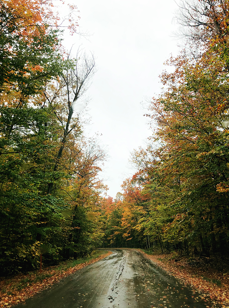 Fall Family Friendly Things to do in Traverse City, Michigan.