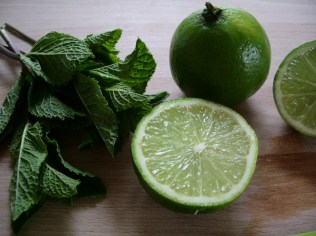 Mint and lime_1