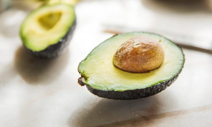 Monstrous 4-Pound 'Avozilla' Avocados Arrive In Australia
