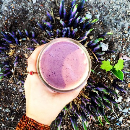 Vegan Blueberry Banana Smoothie