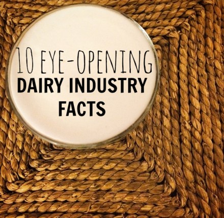 Eye-Opening Dairy Industry Facts
