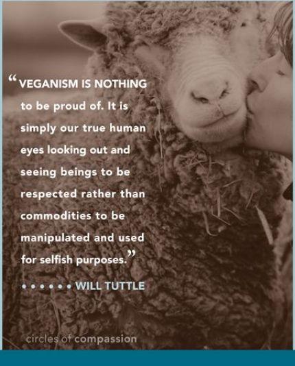 veganpublishers.com