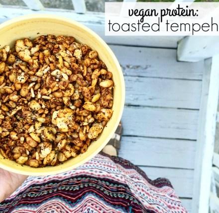 Vegan Toasted Tempeh Recipe