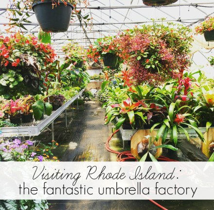 The Fantastic Umbrella Factory