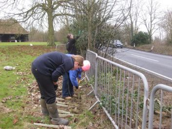 Hedge planting with the help of Essex Wildlife Trust