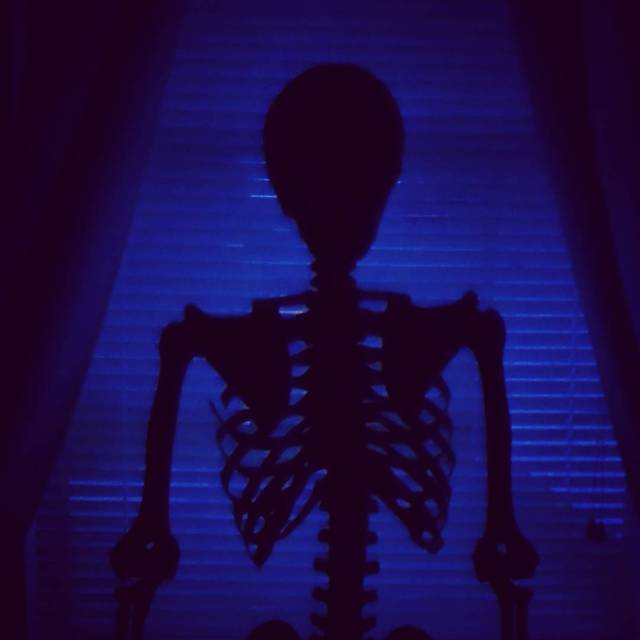 Sitting in the dark thefrightowl skeleton dark followme