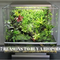 7 Reasons everyone should buy a BioPod