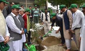 PM launches drive to plant