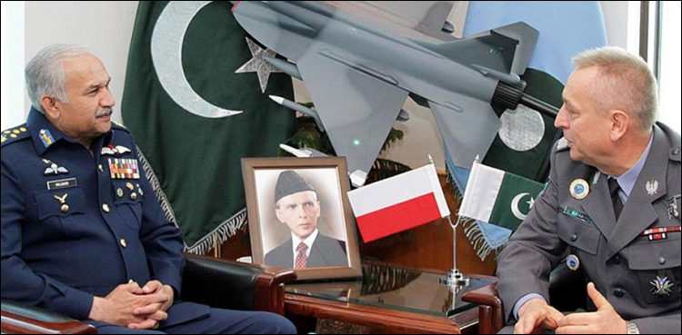 Pakistan, Poland agree to enhance defence cooperation - The