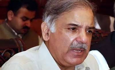 fbr-gives-details-of-shahbaz-sharif-assets-and-taxes-to-nab-sources-1539082086-7545