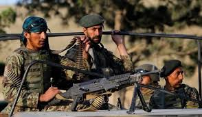 15 militants killed in operations