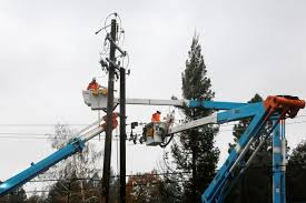PG&E falls further after S&P cuts credit rating to junk