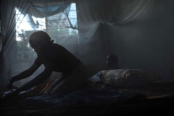 1,800 dead due to malaria