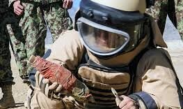 ANA foils 29 blasts after defusing dozens of IEDs