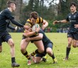 Danske Bank Schools Cup, RBAI, Royal Belfast Academical Institution