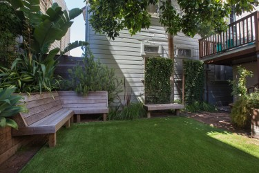 707 Cole St. | Landscaped Yard