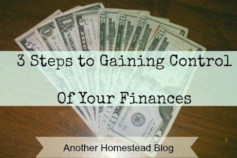 3 Steps to Save Money, Gain Control, and Be a Frugal Rockstar