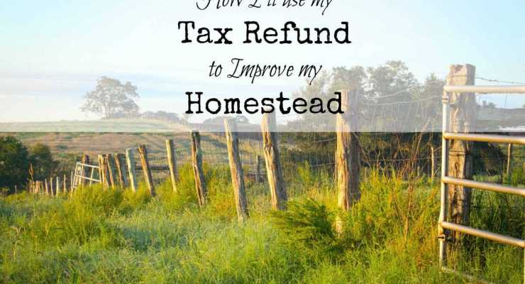 How I'll Spend My Refund to Improve My Homestead: Refining Your Skills