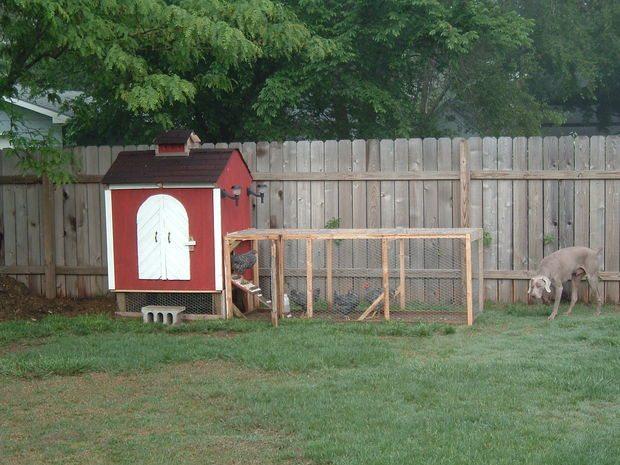 55 diy chicken coop plans for free frugal chicken for Diy chicken house plans free