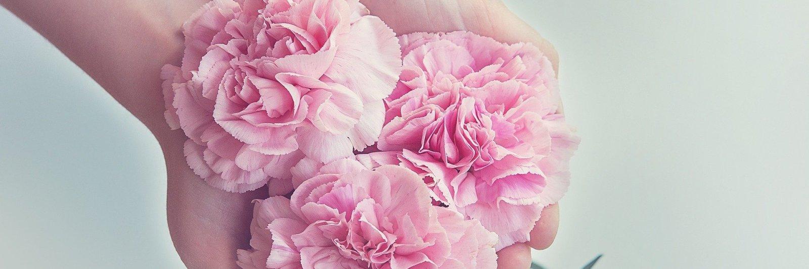 pink-beautiful-flowers-held