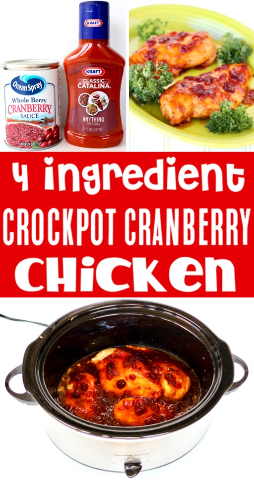 Crockpot Chicken Recipes Easy Healthy Cranberry Chicken Recipe