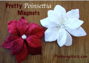 Poinsettia Magnets-DIY