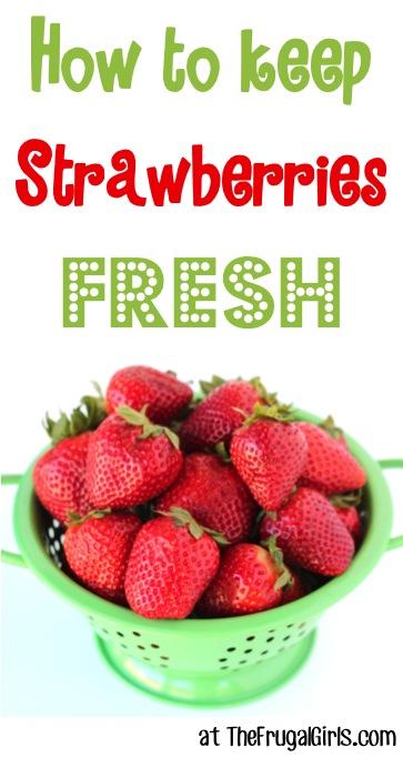 How to Keep Strawberries Fresh at TheFrugalGirls.com