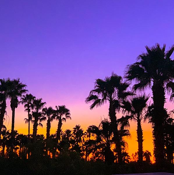 San Diego Travel Tips Family