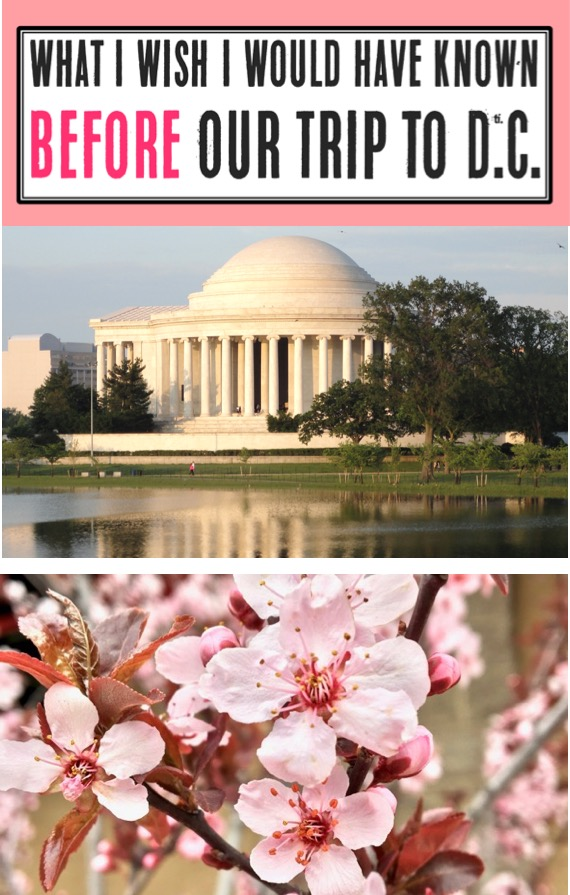 Washington DC Travel Tips - Things to Do in D.C. with Kids and Family