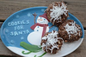 Almond Joy No Bake Cookies Recipe