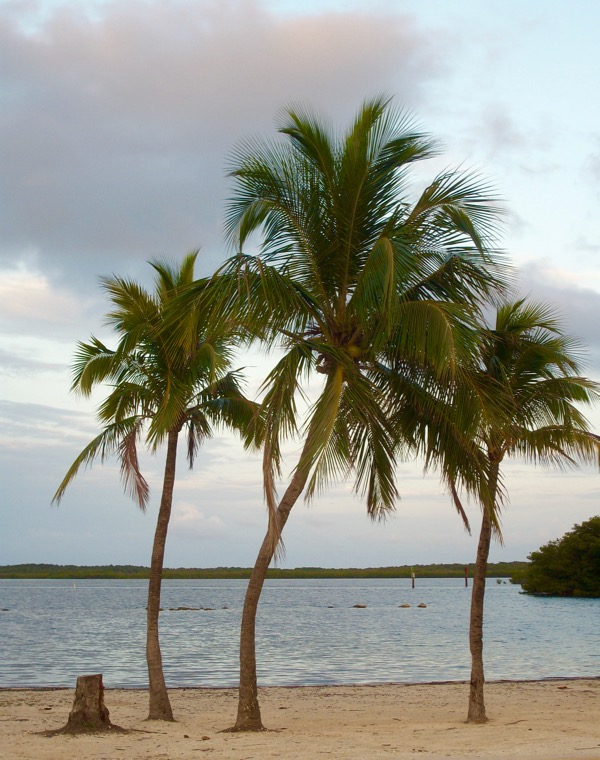 Florida Keys Travel Tips from TheFrugalGirls.com
