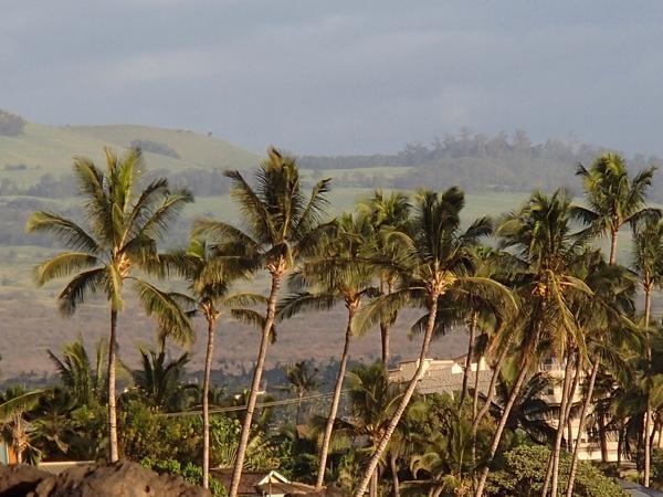 Maui Travel Guide | TheFrugalGirls.com