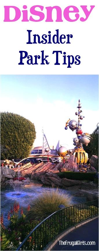 Best Disney Park Tips